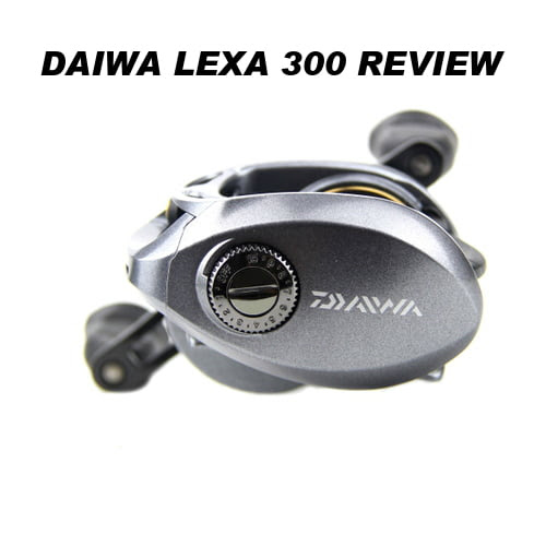 Daiwa Lexa 300 Review: One Of The Most Popular Fishing Reels For Sale