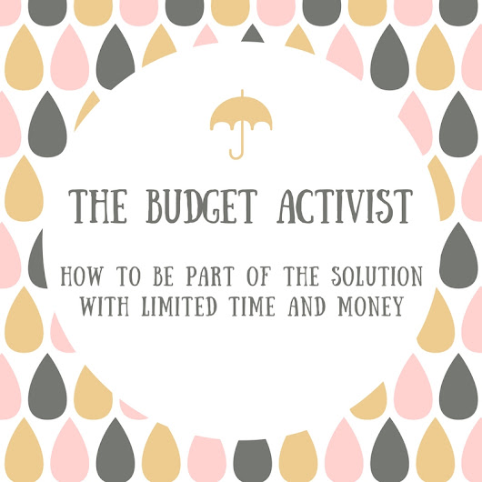 The Budget Activist: How to Be Part of the Solution with Limited Time and Money | Spit That Out: The Blog