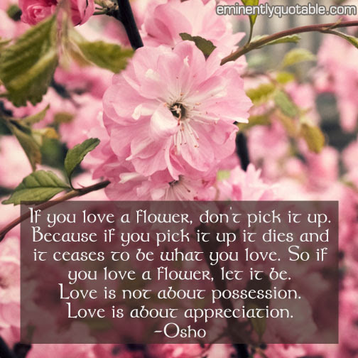 If You Love A Flower Dont Pick It Up ø Eminently Quotable