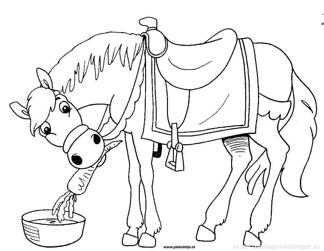 Dessin gratuit cheval a imprimer