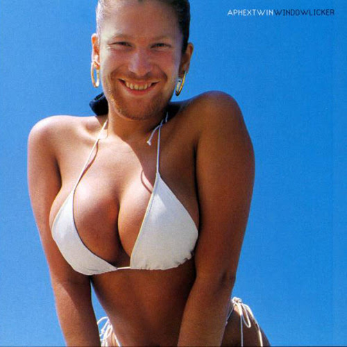 Aphex Twin - Windowlicker (Renaissance Man Bootcut) by Think Outside The Box