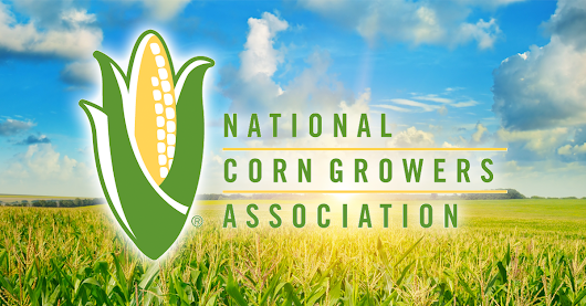 Top Corn Producers Used Accomplish LM, Extract PBA & Titan XC