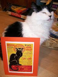 Lydia with my favorite black cat print