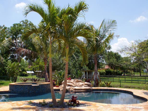 Creating a Professional Backyard Landscape | HGTV