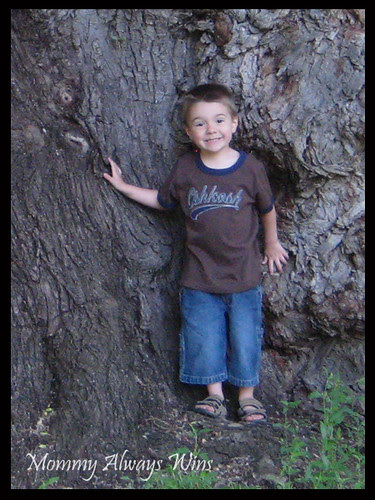 Nick posing by the big tree - 2008