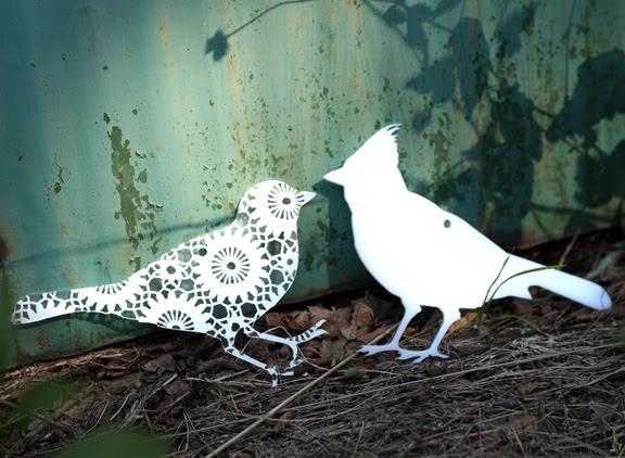 birds duo