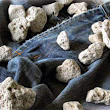 Pumice stones used in Denim Washing