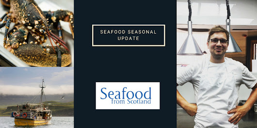 Which seafood is in season right now?