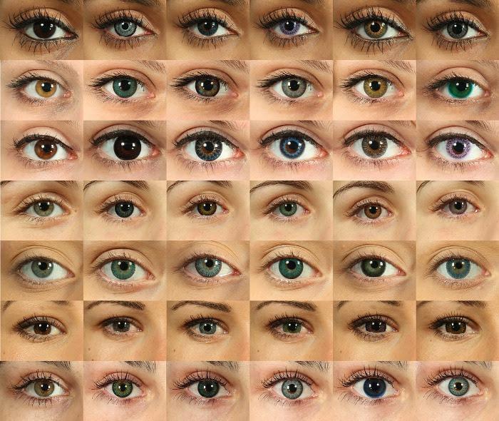 lot of eyes