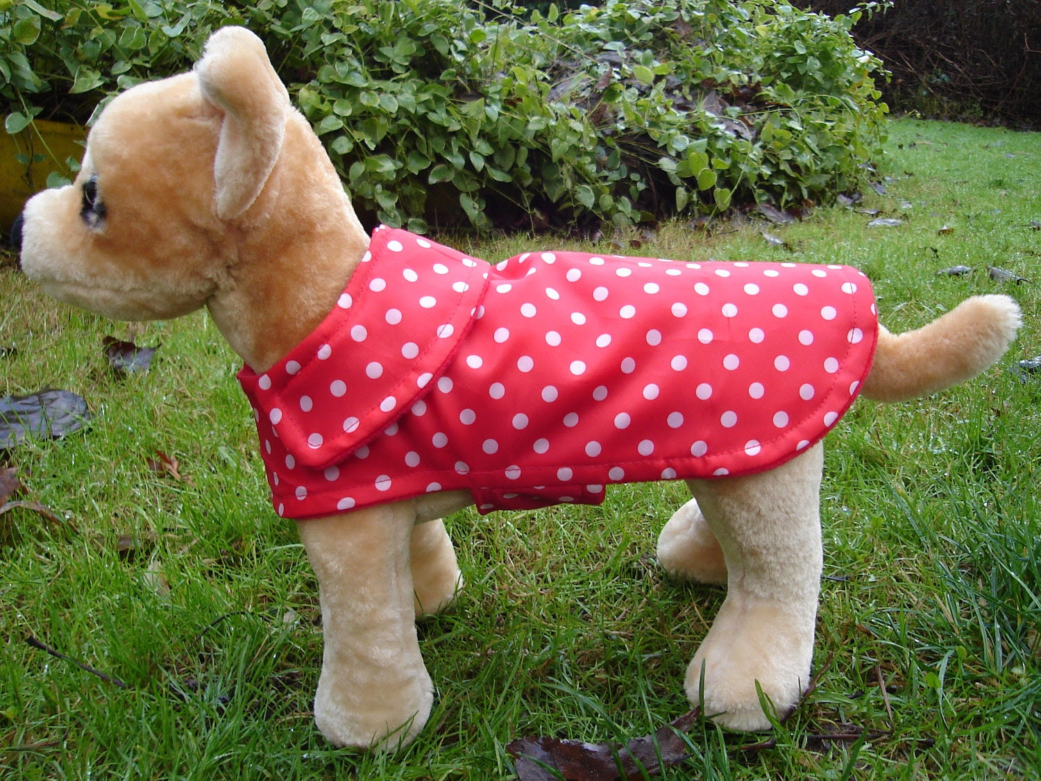 Dog Coat - Red and White Polka Dot Raincoat- Size XX Small- 8 to 10 Inch Back Length - Or Custom Size