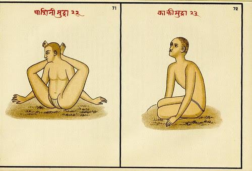 Fakire und Fakirtum im alten und modernen Indien 1908