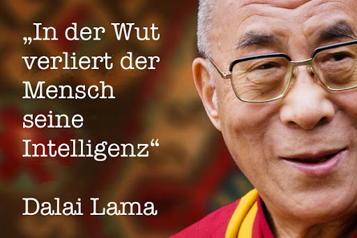 Lama Englisch