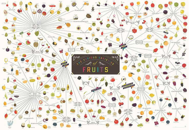 The Various Varieties of Fruit