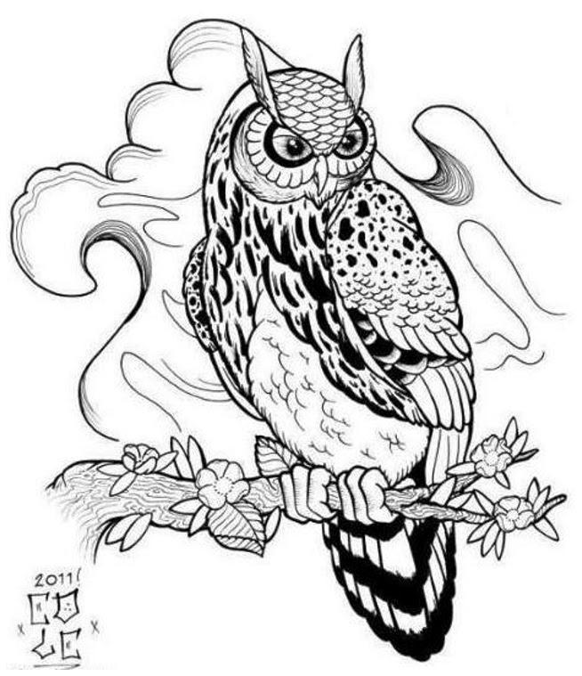 Owl Tattoo Designs Drawings Popular Tattoo Design Clip Art