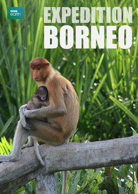 Expedition Borneo - Season 1