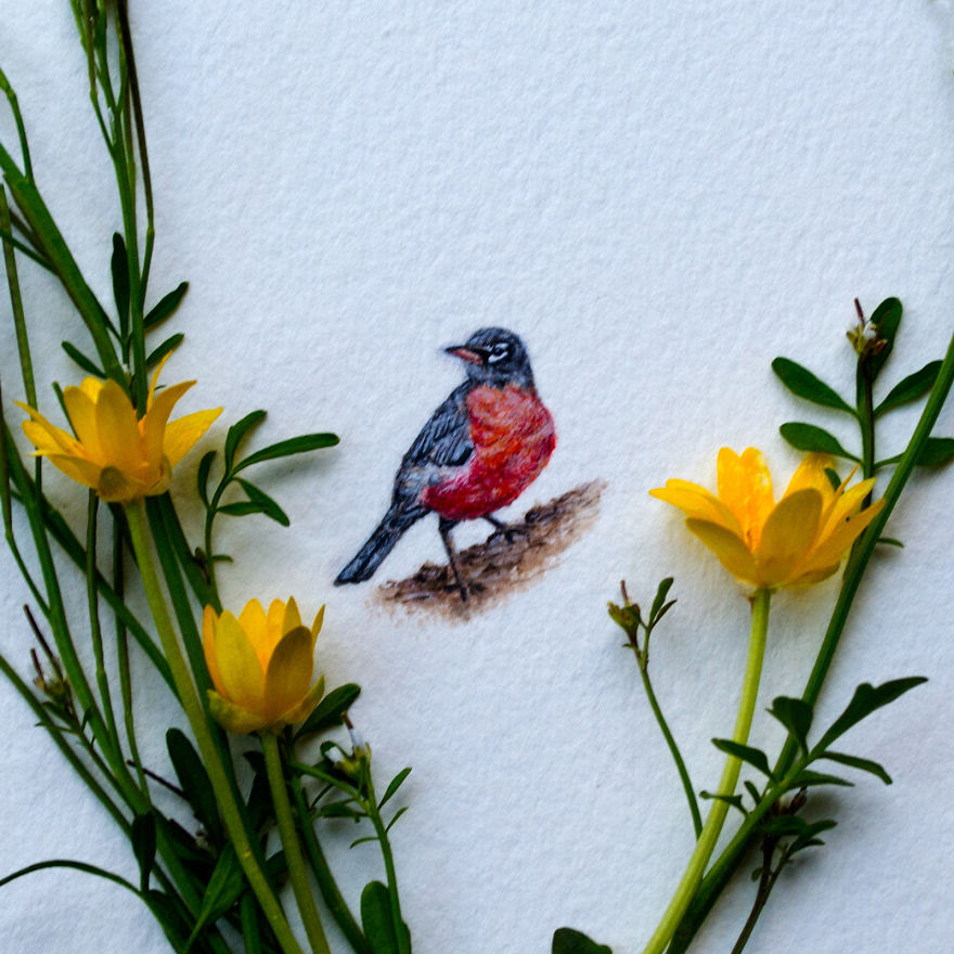Robin. A Little Robin That Was Created For The First Day Of Spring