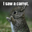 The Funny Bunny Quotes