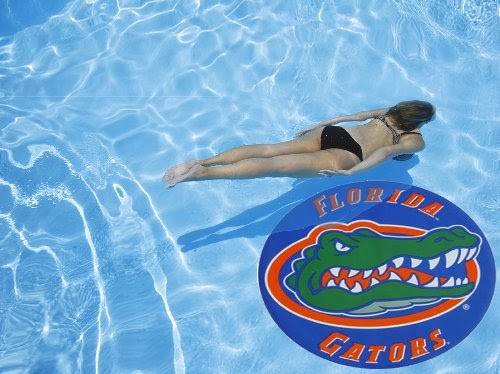 Above Ground Pool Oval Large 47 Quot Florida Gator Swimming