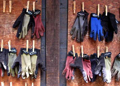Gloves hanging outside the Edible Schoolyard shed by Eve Fox, Garden of Eating blog
