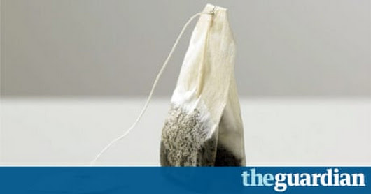 Most UK teabags not fully biodegradeable, research reveals | Environment | The Guardian