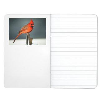 My Bird Journal