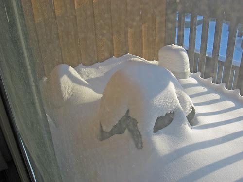 Snowy 'que