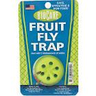Springstar Fruit Fly Trap