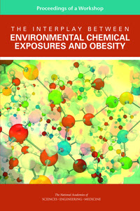 Cover Image: The Interplay Between Environmental Chemical Exposures and Obesity: