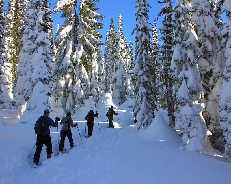 IMG_0445 Ranger-Led Snowshoe Walk