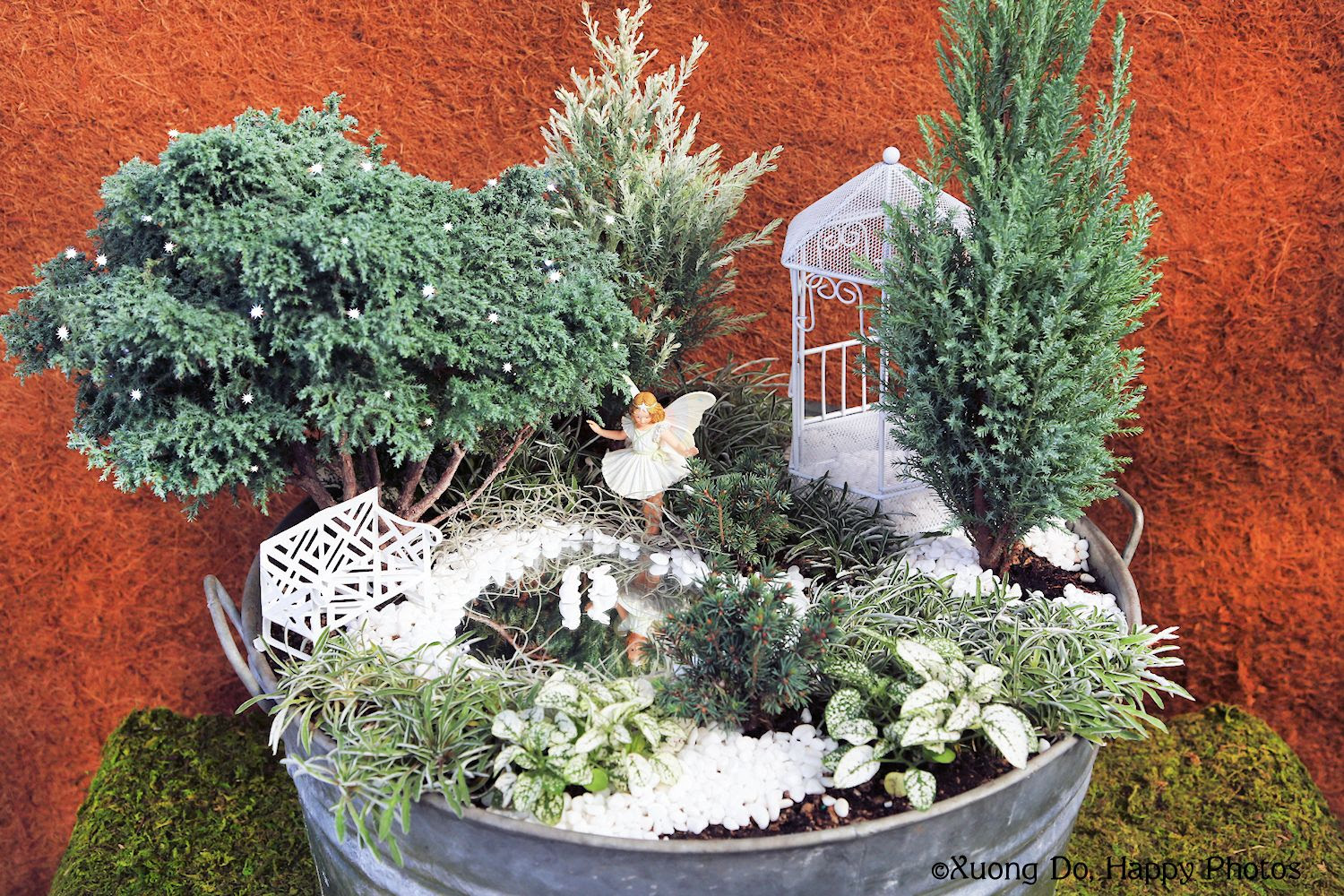 Fairy Gardens: Preparing Them for Winter plus Book Giveaway