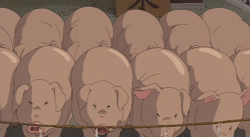 Spirited  pigs lined up