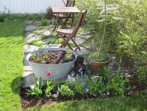 Vår i hagen