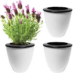 Evelots Self Watering Planter-Indoor-Outdoor-Flowers-Herb-Seeds-10 days-SM-Set/3, Size: Small, White