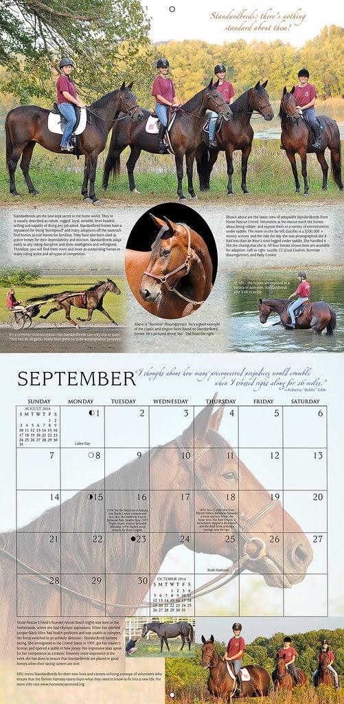 Horses and Hope calendar- September