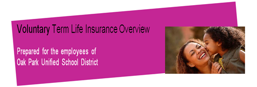 Business Services / Voluntary Group Life Insurance