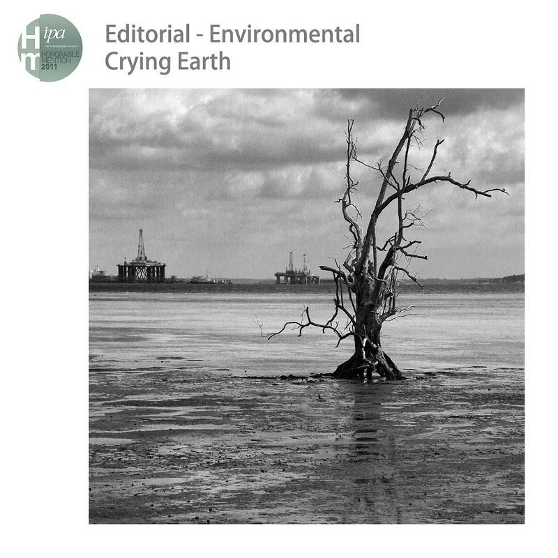 IPA 2011 Environment