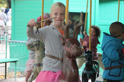 Carousel. Savannah