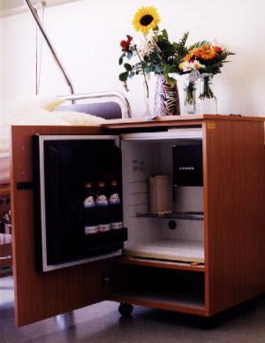 Kühlschrank Wohnzimmer - Dion Debra Blog