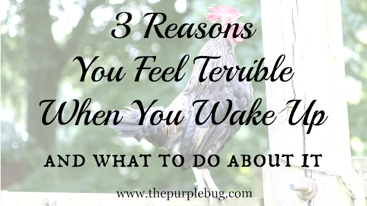 3 Reasons You Feel Terrible When You Wake Up In the Morning - The Purple Bug Project