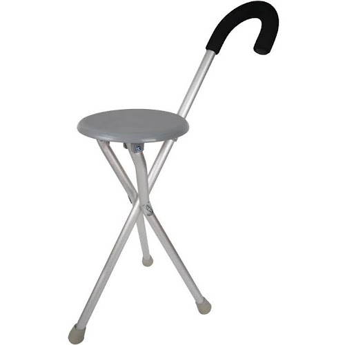 Travelon Convertible 2-in-1 Walking Seat and Cane, Gray/Silver