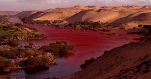The water of the river has turned to a dark red color over more than 35 kilometers, emanating a strong and nauseating sulphurous odor.
