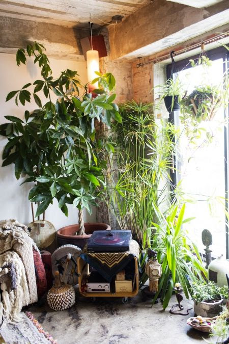 °°Gipsy home°° | mon goût | Pinterest | Home, Plants and House