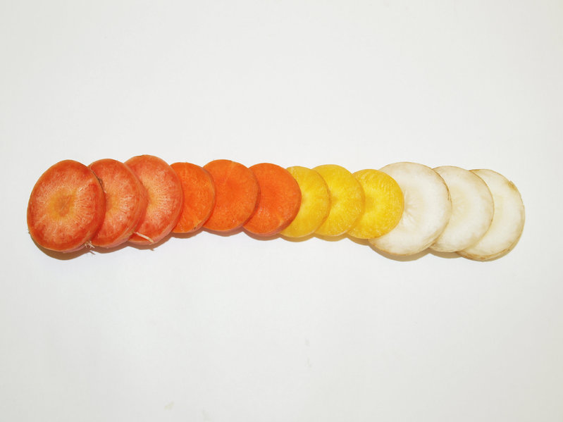 Sliced carrots exhibiting a broad range of naturally occurring carotenoid pigments in this image released on May 9, 2016.  Courtesy Shelby Ellison/Handout via REUTERS