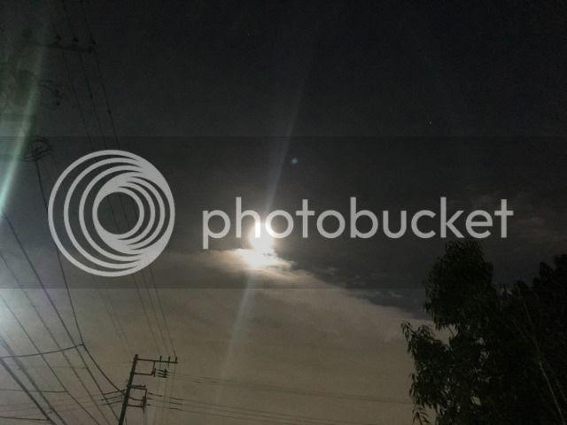photo IMG_9971_zps8bcazegh.jpg