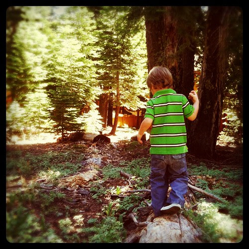 Can't wait till both boys are big enough to go exploring in the woods together. =)
