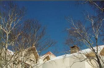 二道白河,2002