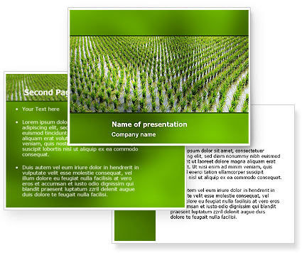 Amvrin baruah google rice paddies powerpoint template poweredtemplate 05325 3 backgrounds 3 masters toneelgroepblik Image collections
