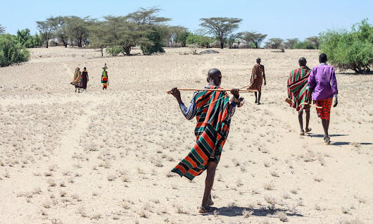 Climate change in Kenya: if we don't act now, we Turkana could lose our homes | Ekai Nabenyo | Global development | The Guardian