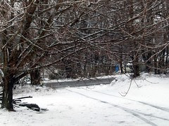 Snow_22410
