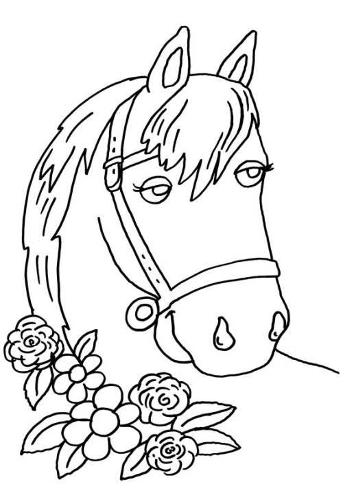 20 luxury malvorlage pferdekopf hufeisen